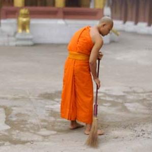 Bodhi Cleanup