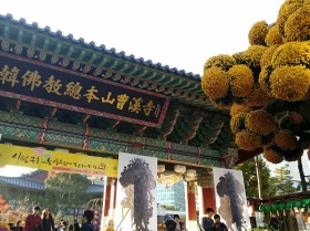 Chrysanthemum tree