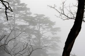 Shadow (Mt Ermei)